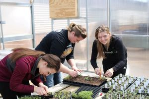 Greenhouse Boosts FFA Plant Sale